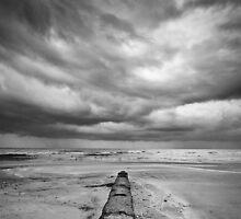 Charmouth Beach by Mark Podger
