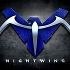 Nightwing by BigRockDJ