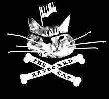 Keyboard Cat Pirate by keyboardcat