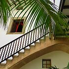 A Stairway With Palms by Fara