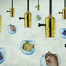 Fish, Lite by SuddenJim