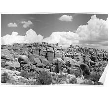 Arches National Park 13 BW Poster