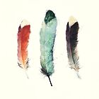 Feathers by Amy Hamilton