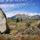 Eastern Sierras by CarolM