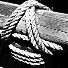 Rope and wood by Thad Zajdowicz