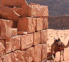 Wadi Rum by Karen Gibson