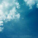 Glorious Blue by Stephanie Rachel Seely
