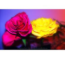 Rosa II Photographic Print