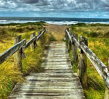 The Boardwalk at Ecola Beach on the Oregon Coast by mspixvancouver