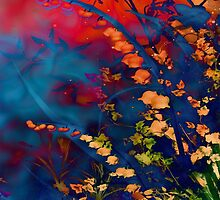 Juxta  by Stephanie Rachel Seely