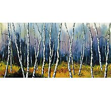 Winter Reverie by Lisa Elley. Palette knife painting in oil  Photographic Print