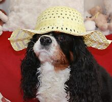 Charlie in her Easter Bonnet by AnnDixon