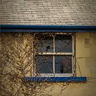 Broken Window by Elaine Teague