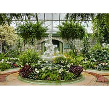 Niagara Falls Greenhouse Photographic Print