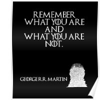 Remember what you are and what you are not. - George R. R. Martin - Game of Thrones Poster