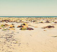 Rocky Beach by Cassia