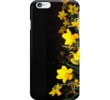 daffs.on.blk iPhone Case/Skin