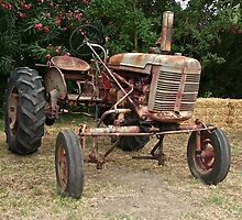 Vintage McCormick Farmall Tractor 2 by DaveKoontz