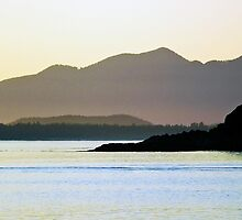 Tofino Sunset by Alison Newth