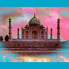 the taj mahal by colioni