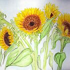 Yellow Sunflowers from Sloan'sMarket by Anne Gitto