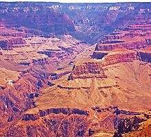 Grand Canyon National Park- Arizona by Buckwhite