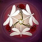 Dragonfly Kiss Mandala by Marg Thomson by fullcirclemandalas  is Marg Thomson