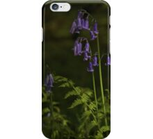 Two Bluebells in Prehen Woods, Derry iPhone Case/Skin