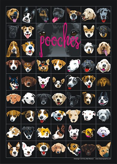 pooches by Matt Mawson