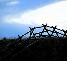 Silhouette Fence by Alison Newth