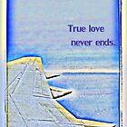 True Love by TaffyTrotski