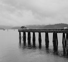 Wharf at Campbell River, B.C. by Kris  Kennedy
