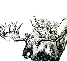 Moose Woodland Animal Snow Edit Illustration On Paper by JamesPeart