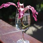 Flower in Glass by Francis Drake