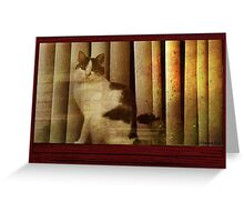 Sun Goes Down on a Rainy Day Greeting Card