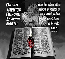 BASIC INSTRUCTIONS BEFORE LEAVING EARTH..CHRISTIAN PILLOW & TOTE BAG by ✿✿ Bonita ✿✿ ђєℓℓσ