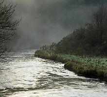 Misty River, Wolfscote Dale by Rod Johnson