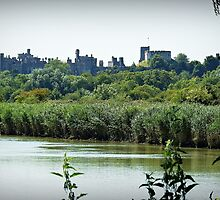 Arundel Castle from the Black Rabbit at Houghton. by mrcoradour