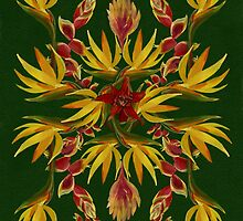 Tropic flower kaleidoscope by Redilion