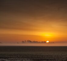 Sunrise over the misty Lincolnshire Fens by David DALES