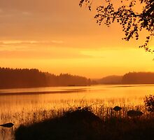Sunset - Finland by mafimushkila