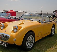 Austin Healey Sport 1960 1275cc by Keith Larby