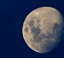 Twilight Moon by diggle
