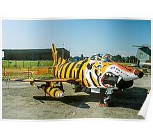Dornier G.91R-3 5452 in Tiger Markings Poster