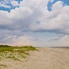 Sullivans Island Beach Day by Patrick Brickman