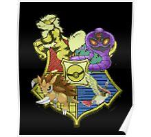 Pokemon houses Poster