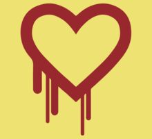 Heartbleed Kids Clothes