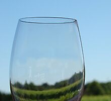 Wine Glass by AGODIPhoto