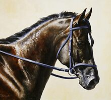 Bay Dressage Horse Painting by csforest