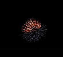 Two-tone Firework by kashmirecho